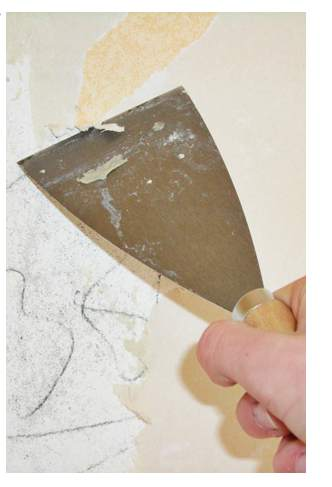 Relevant info new guide for healthy flooring materials for Healthy flooring guide